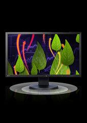 "Monitor EIZO LCD 23"" EV2336 (czarny) (PC)"
