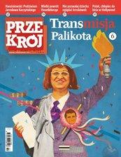 """""""Przekrój"""" nr 422011"""