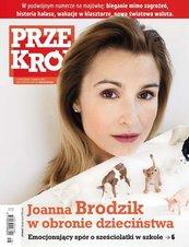 """""""Przekrój"""" nr 16-17/2013"""