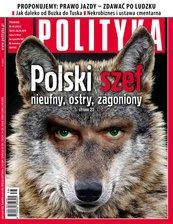 Polityka nr 38/2013