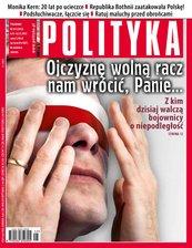 Polityka nr 45/2013