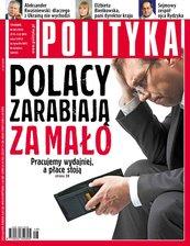Polityka nr 48/2013