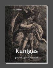 Kunigas - powieść z podań litewskich