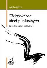 Efektywność sieci publicznych. Podejście wielopoziomowe