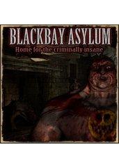 Blackbay Asylum (PC) DIGITAL