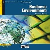 Business Environment