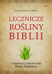 Lecznicze rośliny Biblii. Tajemnice zdrowotne Pisma Świętego
