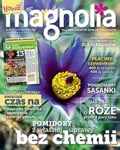 Magnolia 4/2017