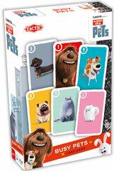 Sekretne Życie Zwierzaków Busy Pets gra karciana