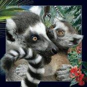 Magnes 3D Lemur