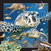 Magnes 3D - Żółw morski