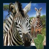 Magnes 3D - Zebra