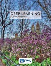 Deep Learning Współczesne systemy uczące się