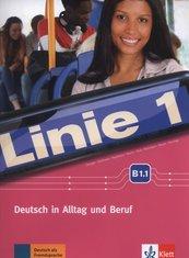 Linie 1 B1.1 Kurs- und Ubungsbuch +DVD