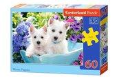 Puzzle Westie Puppies 60