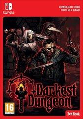 Darkest Dungeon (Switch DIGITAL)