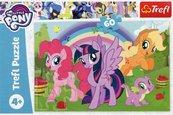 Puzzle 60 My Little Pony Tęczowa przyjaźń