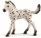 Koń Knapstrupper Foal