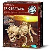 Dino szkielety Triceratops