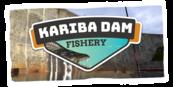 Ultimate Fishing Simulator - Kariba Dam DLC (PC) Klucz Steam