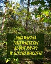 Objawienia Najświętszej Maryi Panny W Gietrzwałdzie. Ze źródeł autentycznych
