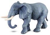Słoń afrykański XL