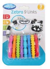 Gryzak aktywna zebra