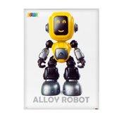Robot funkcyjny