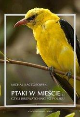 Ptaki w mieście czyli birdwatching po polsku