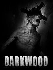 Darkwood (PC) klucz Steam