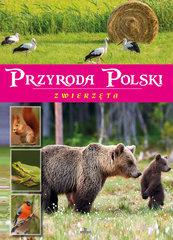 Przyroda Polski Zwierzęta
