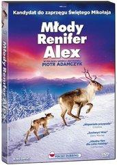 Młody renifer Alex DVD