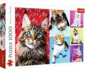 Puzzle 1000 Wesołe koty TREFL