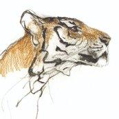 Karnet kwadrat z kopertą Head of a Tiger