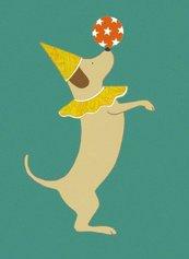 Karnet 17x14cm z kopertą Party Dog