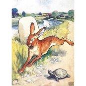 Karnet B6 z kopertą The Hare and the Tortoise