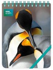 Kołonotes ozdobny King Penguins