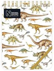 Kołonotes ozdobny Dinosaurs