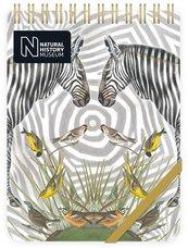 Kołonotes ozdobny Zebra
