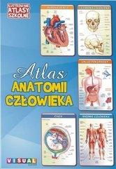 Ilustrowany atlas szkolny.Atlas anatomii człowieka