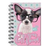 Notes na spirali Studio Pets PTD-3630 PASO