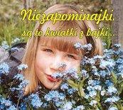 Niezapominajki są to kwiatki z bajki