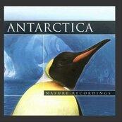 Antarctica. Nature Recordings (CD)