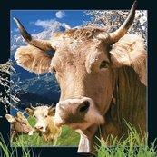 Pocztówka 3D Szwajcarska krowa