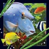 Pocztówka 3D Niebieska ryba