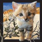 Pocztówka 3D Kot arabski