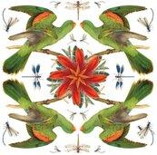 Karnet kwadrat z kopertą Red-winged Parrot
