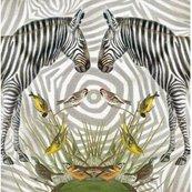 Karnet kwadrat z kopertą Zebra