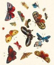 Karnet z kopertą Butterfly design decorati