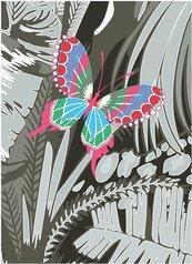 Karnet B6 z kopertą Butterfly
